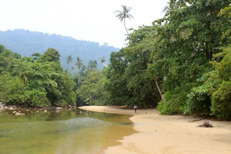Zach walking into the rainforest from Juara beach.