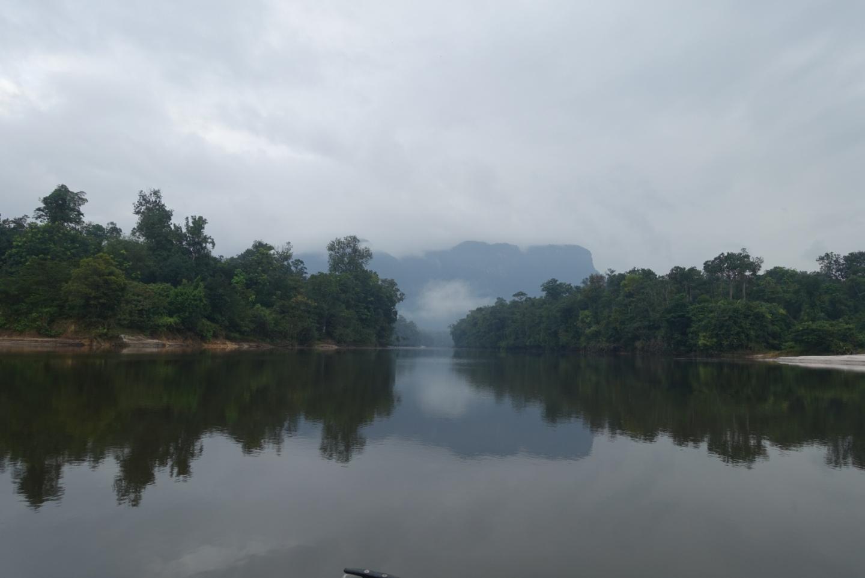 River Potaro leading into dense Jungle.